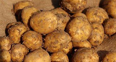 ofenkartoffel-1
